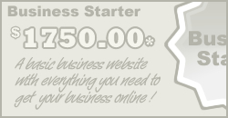 Business Starter Package $1895.00